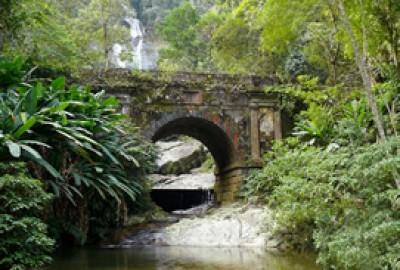 Tour Rio 8 – Burle Marx and Jardim Botânico Duration: 8 hours